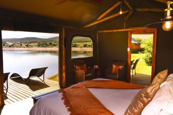 Buffel Drift lodge Waterfront Tent