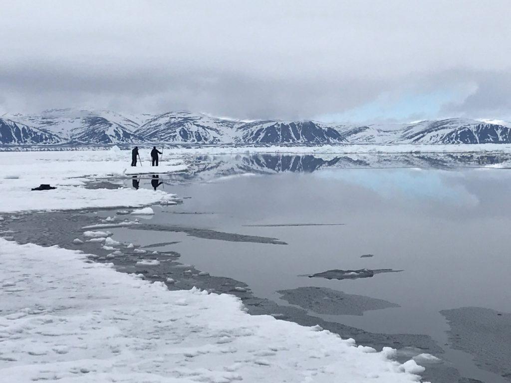 CM Travels | Canada | Narwal and Polar Bear Safari | IMG_4894