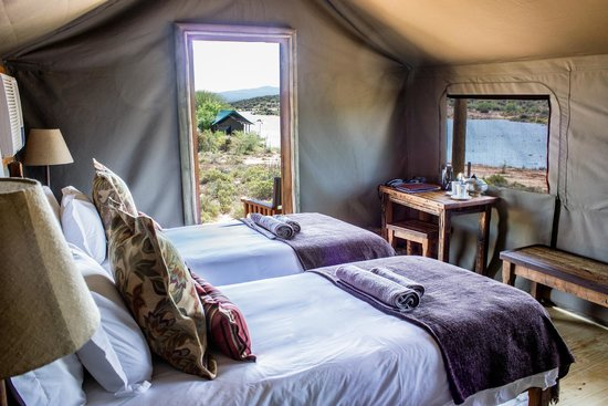 Buffel Drift lodge Luxury tent