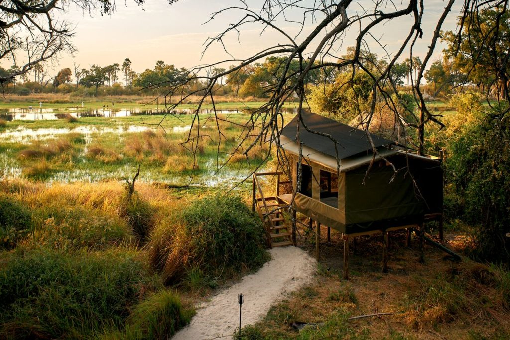 CM Travels | Botswana | Oddballs Camp 5