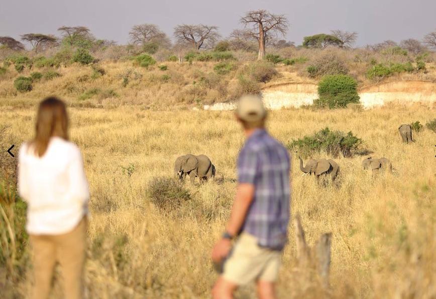 CM-Travels-ruaha-ikuka-safari-lodge-tanzania6