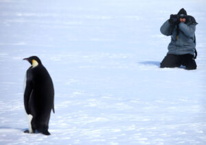 cm-travels-antartica-wildlife-nature-white-desert-camp-emperor-penguins-ulitmate-luxury-private-photographing