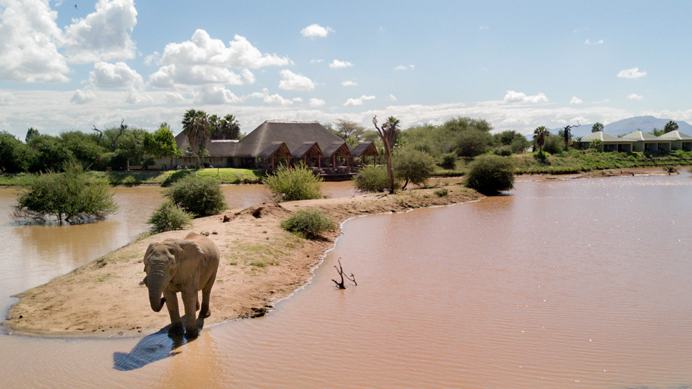 erindi-old-traders-lodge-cm-travels-namibia-wildlife-nature-safari-camp-elephant-drinking