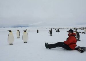 cm-travels-antartica-wildlife-nature-emperor-penguins-ulitmate-luxury-private-south-pole-emperor-colony